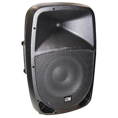 Акустическая система с 2 микрофонами Leem PR-12HR