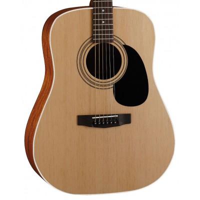 Акустическая гитара Parkwood W81-OP в салоне Минотавр