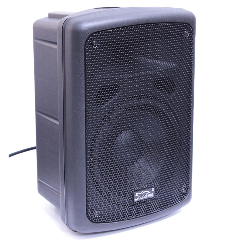 Акустическая система Soundking FP208-1A под заказ в Челябинске