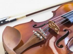 Поступление аксессуаров для скрипки в салоне Минотавр