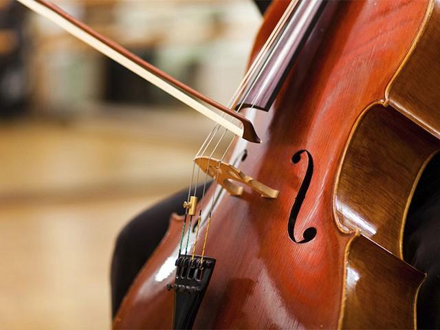 Смычки, струны и другие аксессуары для виолончели в Минотавре
