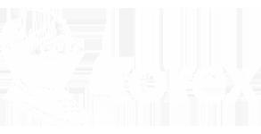 Логотип Torex чья продукция представлена в салоне Минотавр